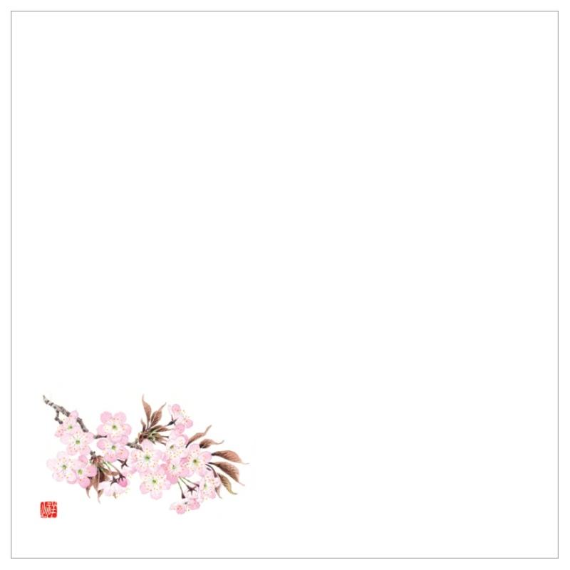 耐油天紙カラー五寸 No.0036 桜